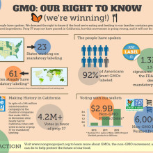 Non-GMO Project InfoGraphic